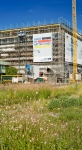 Volksbank Mannheim, Augustaanlage 59, Sommer 2014